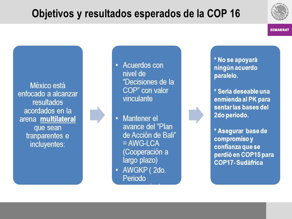 Objetivos y resultados esperados de la COP 16 México está enfocado a alcanzar resultados acordados en la arena multilateral que sean tranparentes e incluyentes: Acuerdos con nivel de Decisiones de la COP con valor vinculante Mantener el avance del Plan de Acción de Bali = AWG-LCA (Cooperación a largo plazo) AWGKP ( 2do.