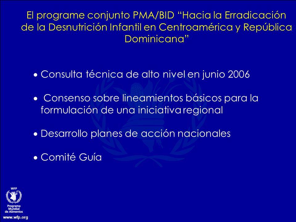 www.wfp.org El programe conjunto PMA/BID Hacia la Erradicación de la Desnutrición Infantil en Centroamérica y República Dominicana Consulta técnica de