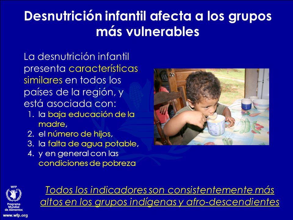 www.wfp.org Desnutrición infantil afecta a los grupos más vulnerables Todos los indicadores son consistentemente más altos en los grupos indígenas y a