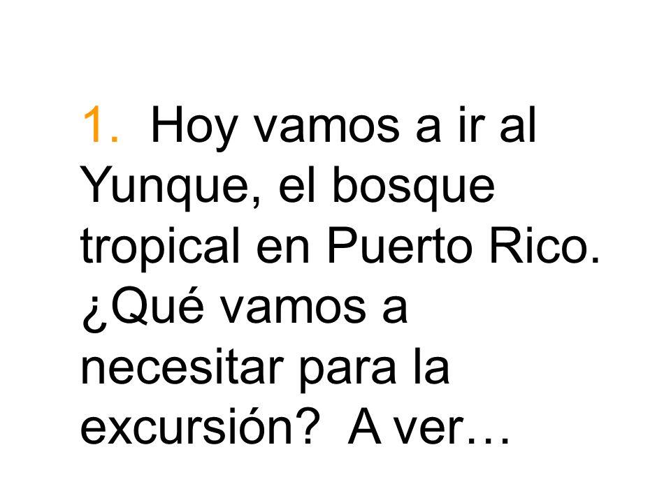 1. Hoy vamos a ir al Yunque, el bosque tropical en Puerto Rico. ¿Qué vamos a necesitar para la excursión? A ver…