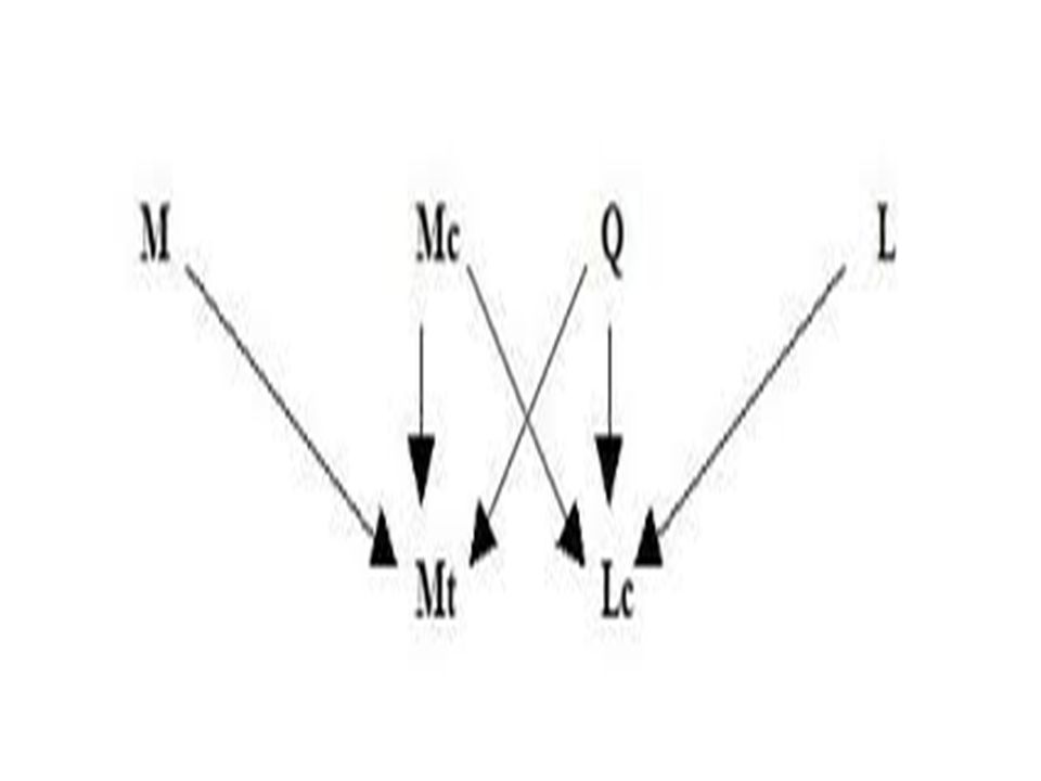 Mc.6,30-44Mc.8,1-10 5 panes.Pentateuco7 panes.