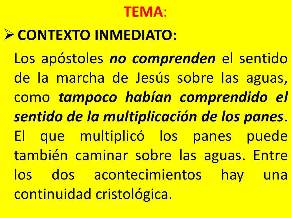 TEMA: CONTEXTO INMEDIATO: Los apóstoles no comprenden el sentido de la marcha de Jesús sobre las aguas, como tampoco habían comprendido el sentido de
