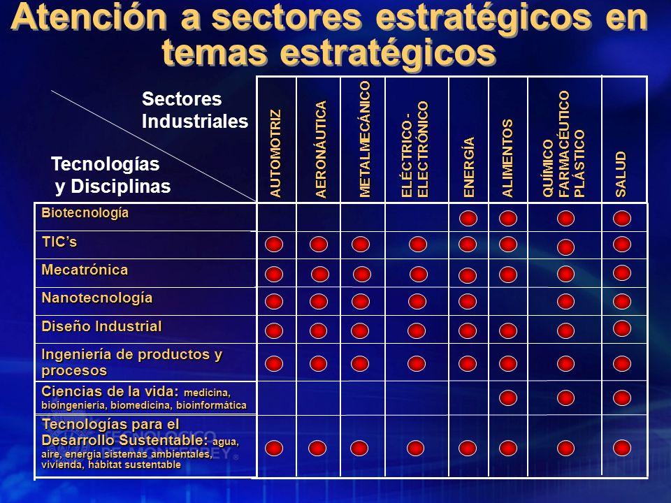 Atención a sectores estratégicos en temas estratégicos