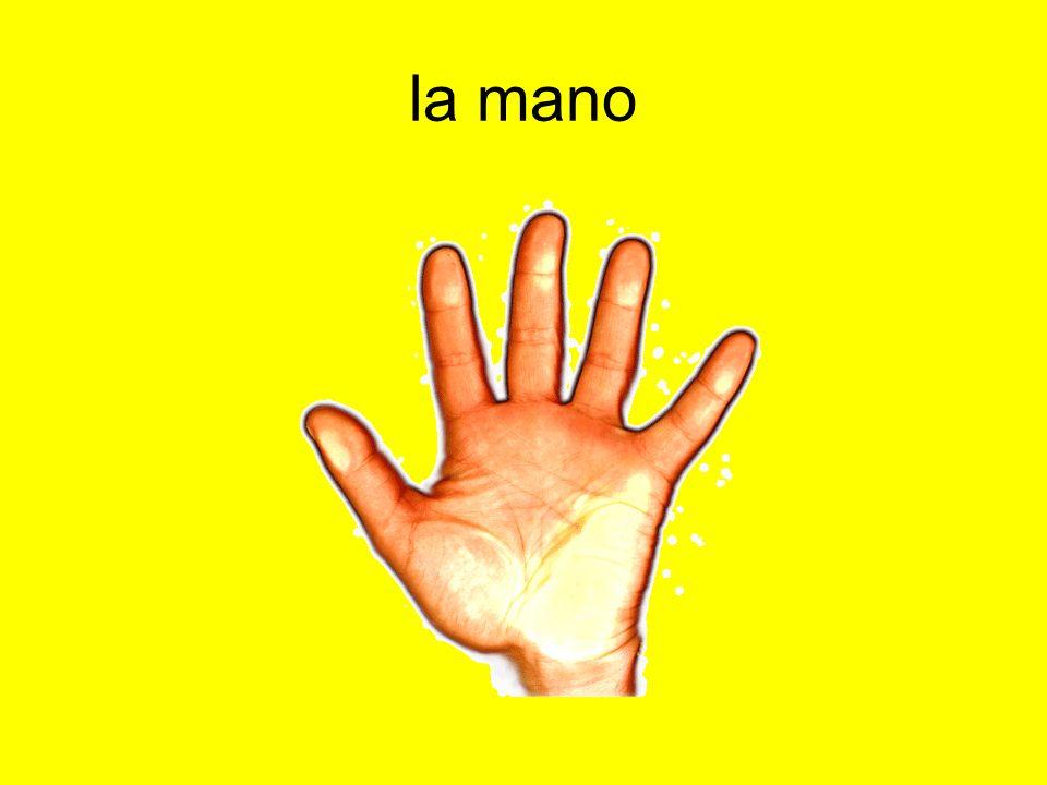 la mano