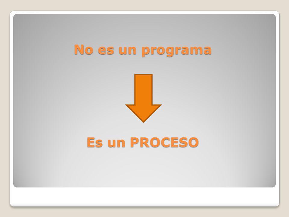 No es un programa Es un PROCESO