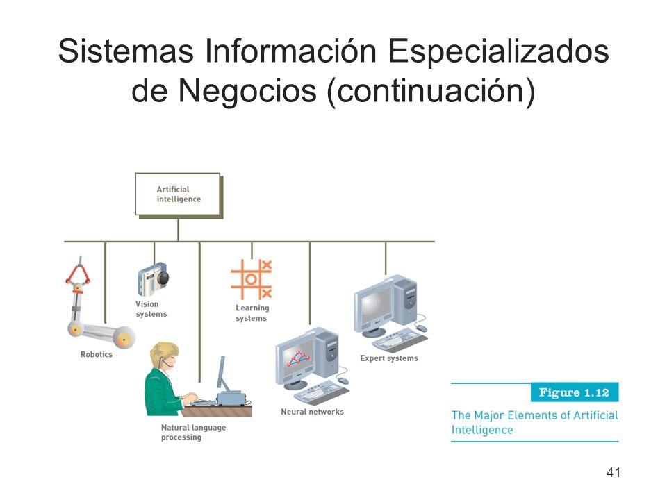 Sistemas Información Especializados de Negocios (continuación) 41