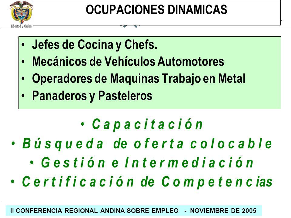 REPÚBLICA DE COLOMBIA MINISTERIO DE LA PROTECCIÓN SOCIAL II CONFERENCIA REGIONAL ANDINA SOBRE EMPLEO - NOVIEMBRE DE 2005 OCUPACIONES DINAMICAS Jefes d