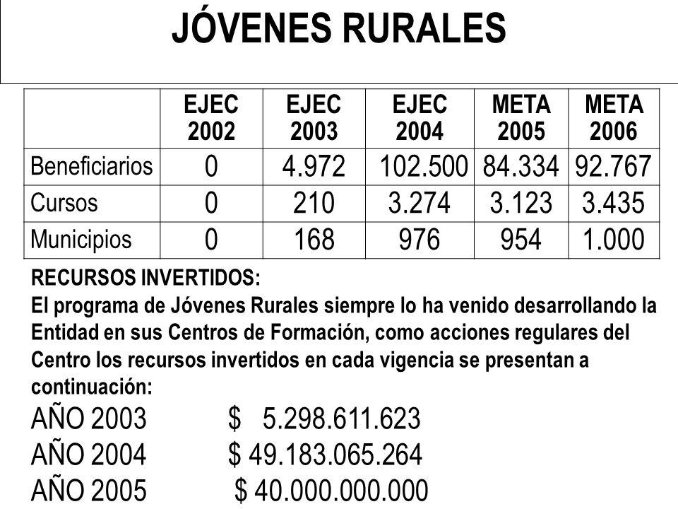 REPÚBLICA DE COLOMBIA MINISTERIO DE LA PROTECCIÓN SOCIAL II CONFERENCIA REGIONAL ANDINA SOBRE EMPLEO - NOVIEMBRE DE 2005 JÓVENES RURALES EJEC 2002 EJE