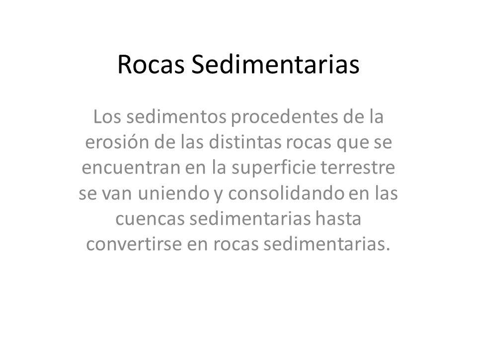 Rocas Sedimentarias Los sedimentos procedentes de la erosión de las distintas rocas que se encuentran en la superficie terrestre se van uniendo y cons