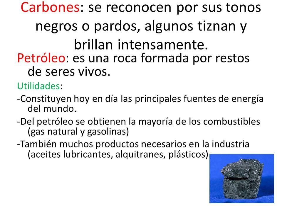 Carbones: se reconocen por sus tonos negros o pardos, algunos tiznan y brillan intensamente. Petróleo: es una roca formada por restos de seres vivos.