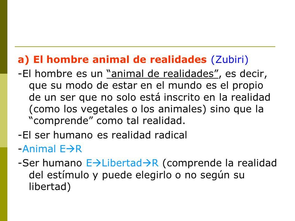 a) El hombre animal de realidades (Zubiri) -El hombre es un animal de realidades, es decir, que su modo de estar en el mundo es el propio de un ser qu