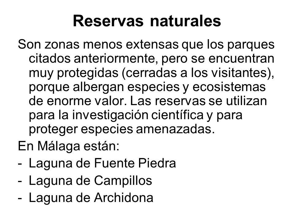 Reservas naturales Son zonas menos extensas que los parques citados anteriormente, pero se encuentran muy protegidas (cerradas a los visitantes), porq