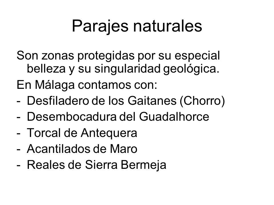 Parajes naturales Son zonas protegidas por su especial belleza y su singularidad geológica. En Málaga contamos con: -Desfiladero de los Gaitanes (Chor