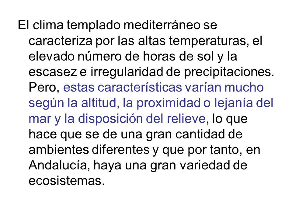 El clima templado mediterráneo se caracteriza por las altas temperaturas, el elevado número de horas de sol y la escasez e irregularidad de precipitac