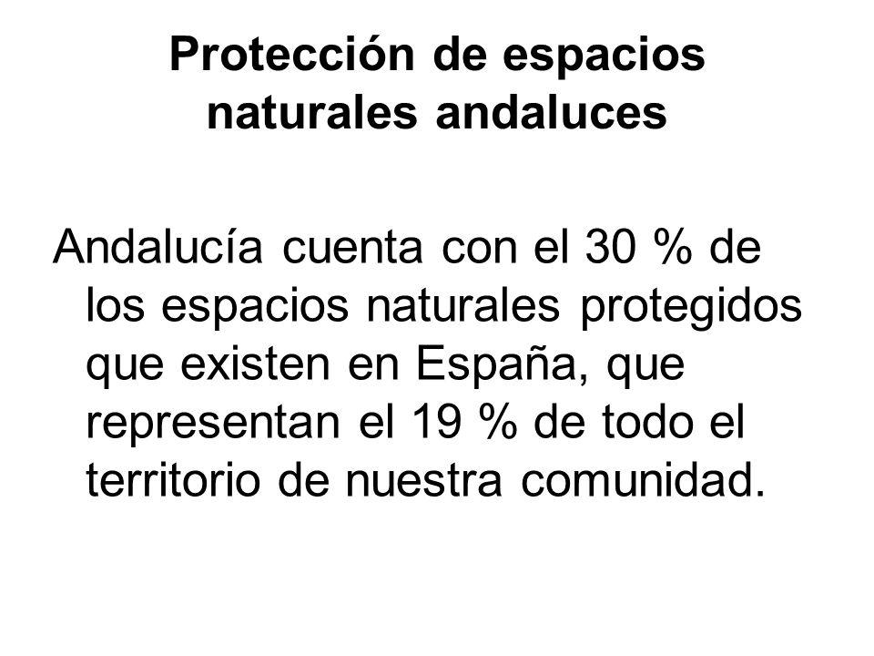 Protección de espacios naturales andaluces Andalucía cuenta con el 30 % de los espacios naturales protegidos que existen en España, que representan el