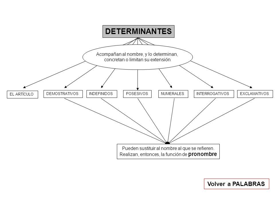 DETERMINANTES EL ARTÍCULO DEMOSTRATIVOSINDEFINIDOSPOSESIVOSNUMERALESINTERROGATIVOSEXCLAMATIVOS Acompañan al nombre, y lo determinan, concretan o limit