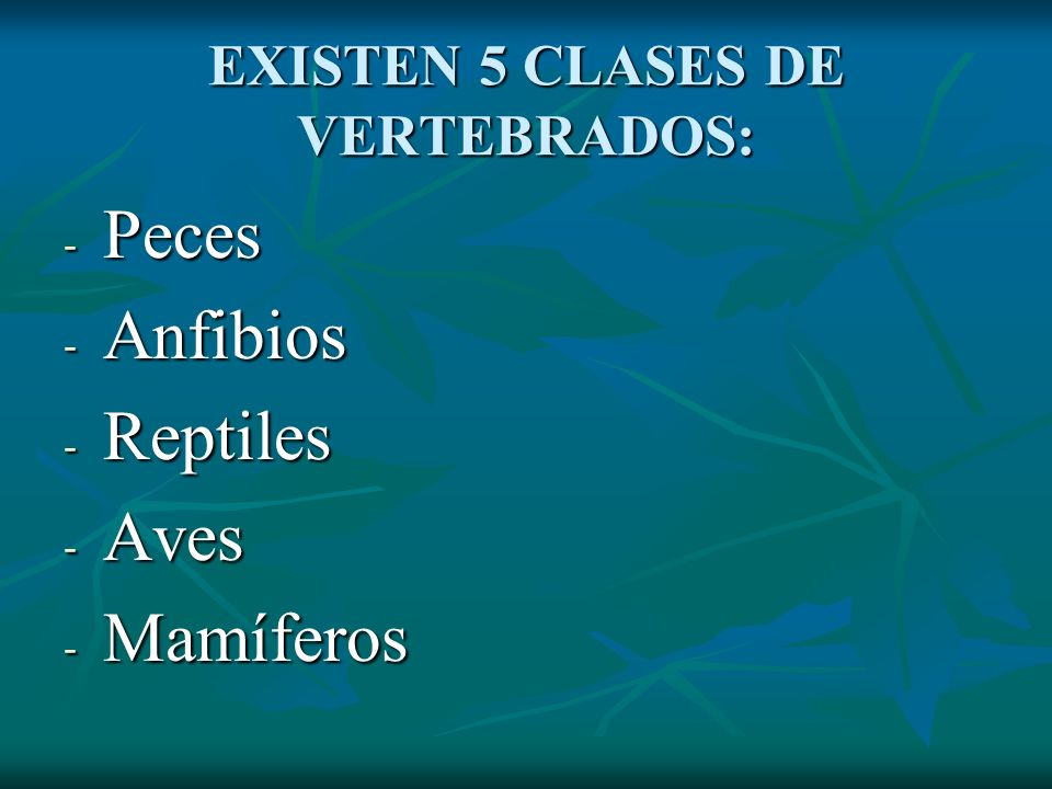 EXISTEN 5 CLASES DE VERTEBRADOS: - Peces - Anfibios - Reptiles - Aves - Mamíferos
