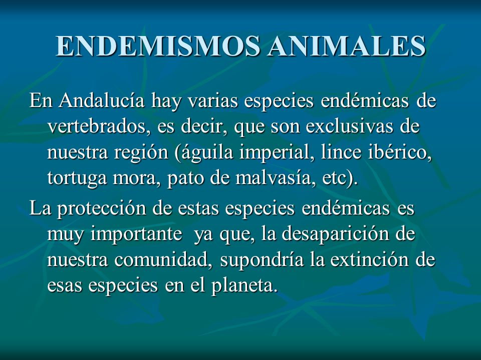 ENDEMISMOS ANIMALES En Andalucía hay varias especies endémicas de vertebrados, es decir, que son exclusivas de nuestra región (águila imperial, lince