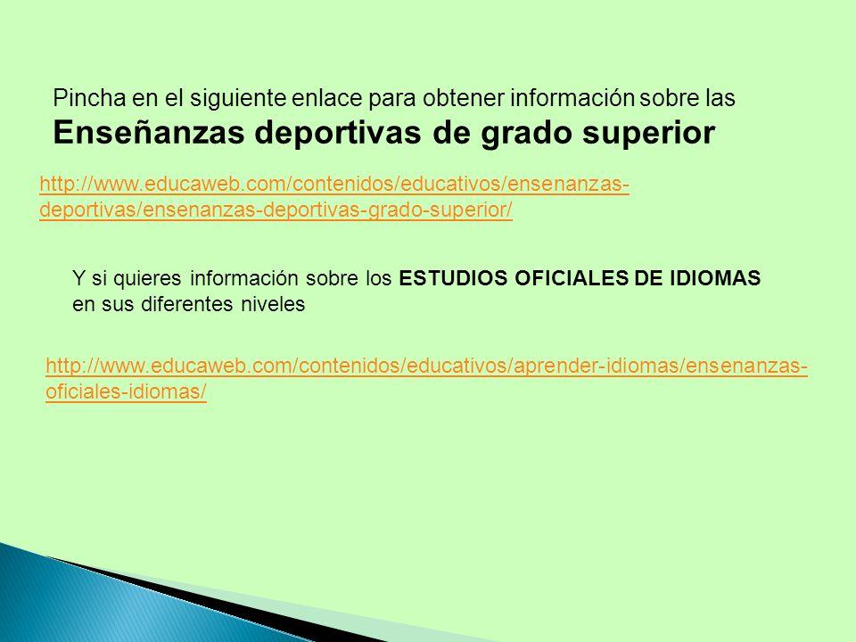 Pincha en el siguiente enlace para obtener información sobre las Enseñanzas deportivas de grado superior http://www.educaweb.com/contenidos/educativos