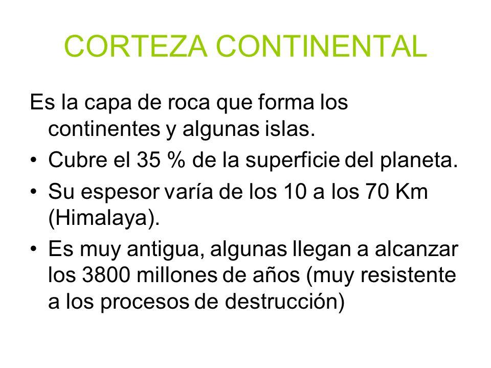 CORTEZA CONTINENTAL Es la capa de roca que forma los continentes y algunas islas. Cubre el 35 % de la superficie del planeta. Su espesor varía de los