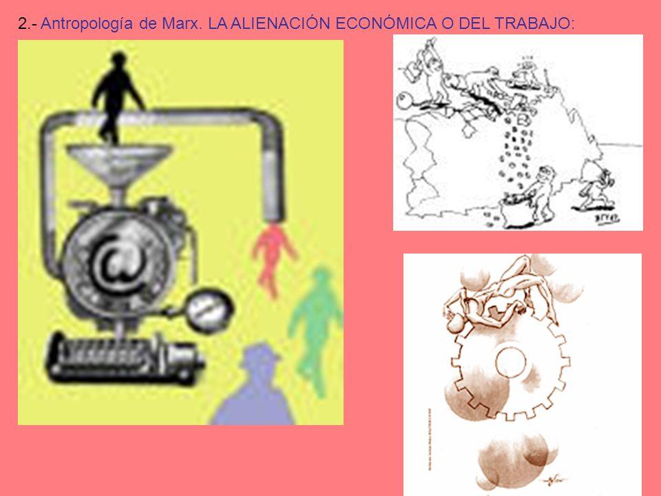 2.- Antropología de Marx. LA ALIENACIÓN ECONÓMICA O DEL TRABAJO: