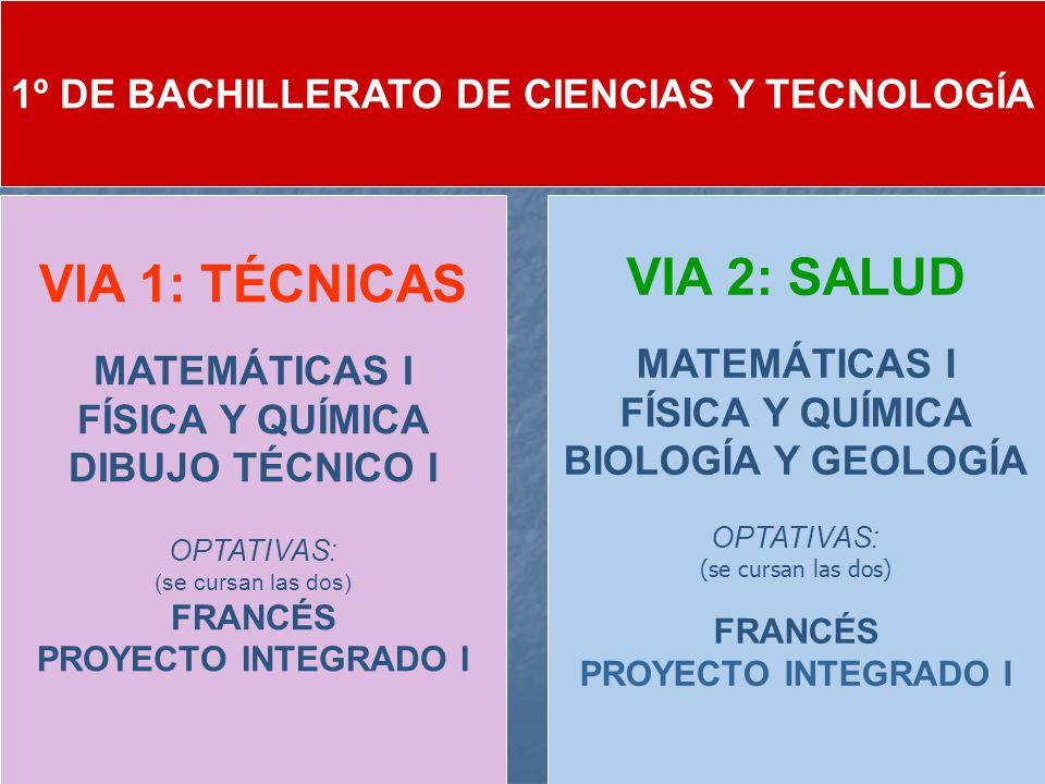 1º DE BACHILLERATO DE CIENCIAS Y TECNOLOGÍA VIA 1: TÉCNICAS MATEMÁTICAS I FÍSICA Y QUÍMICA DIBUJO TÉCNICO I OPTATIVAS: (se cursan las dos) FRANCÉS PRO