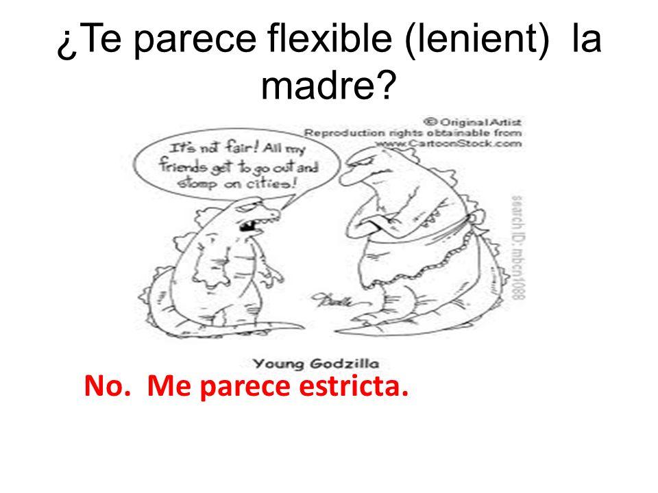 ¿Te parece flexible (lenient) la madre? No. Me parece estricta.