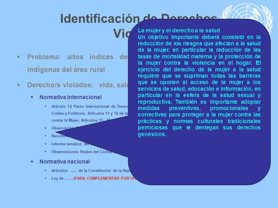 Identificación de Derechos Violados Problema: altos índices de la mortalidad materna en mujeres indígenas del área rural Derecho/s violados: vida, sal