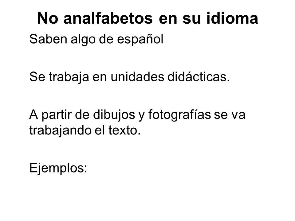 No analfabetos en su idioma Saben algo de español Se trabaja en unidades didácticas. A partir de dibujos y fotografías se va trabajando el texto. Ejem
