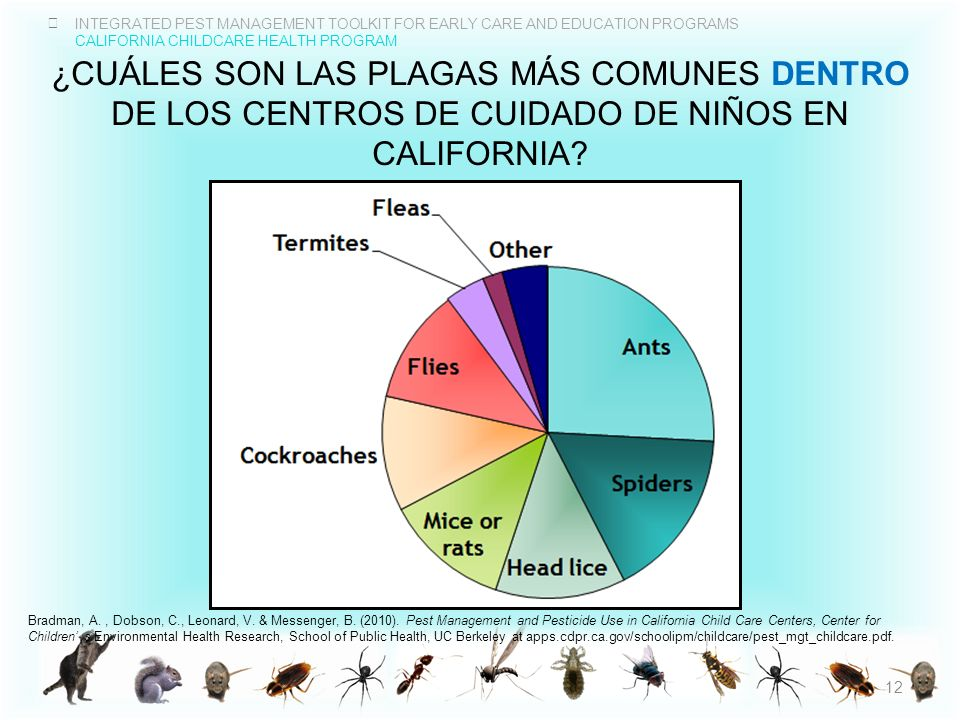 INTEGRATED PEST MANAGEMENT TOOLKIT FOR EARLY CARE AND EDUCATION PROGRAMS CALIFORNIA CHILDCARE HEALTH PROGRAM ¿CUÁLES SON LAS PLAGAS MÁS COMUNES DENTRO
