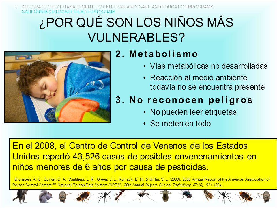 INTEGRATED PEST MANAGEMENT TOOLKIT FOR EARLY CARE AND EDUCATION PROGRAMS CALIFORNIA CHILDCARE HEALTH PROGRAM ¿POR QUÉ SON LOS NIÑOS MÁS VULNERABLES? 2