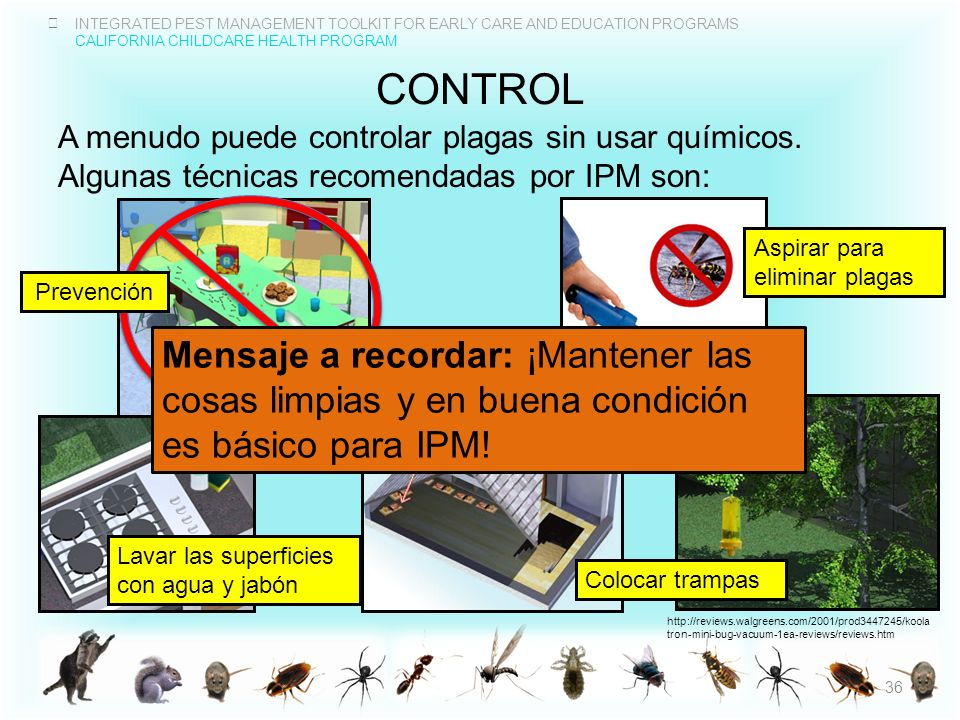 INTEGRATED PEST MANAGEMENT TOOLKIT FOR EARLY CARE AND EDUCATION PROGRAMS CALIFORNIA CHILDCARE HEALTH PROGRAM CONTROL A menudo puede controlar plagas s