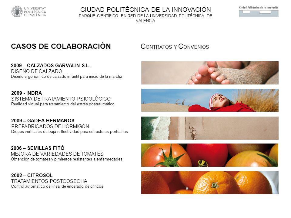 2009 – CALZADOS GARVALÍN S.L. DISEÑO DE CALZADO Diseño ergonómico de calzado infantil para inicio de la marcha 2009 - INDRA SISTEMA DE TRATAMIENTO PSI