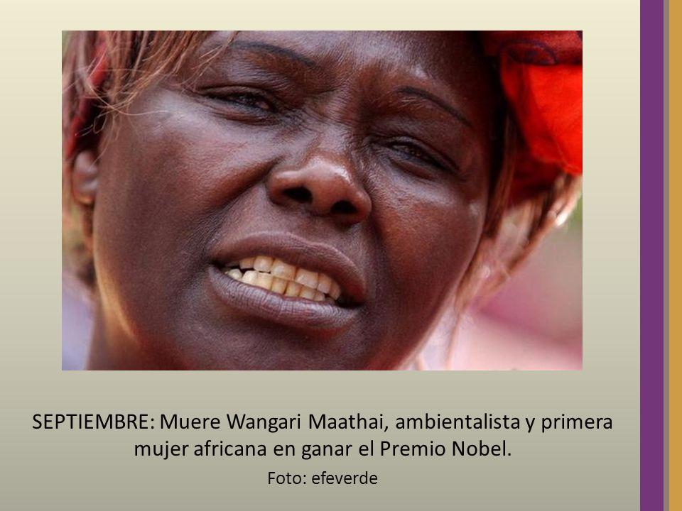 SEPTIEMBRE: Muere Wangari Maathai, ambientalista y primera mujer africana en ganar el Premio Nobel. Foto: efeverde