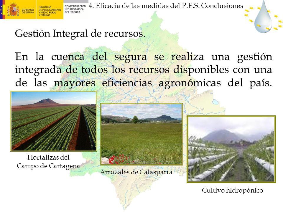 En la cuenca del segura se realiza una gestión integrada de todos los recursos disponibles con una de las mayores eficiencias agronómicas del país. 4.