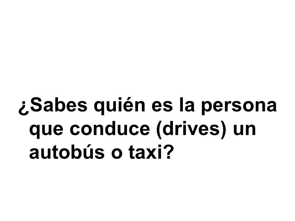 ¿Sabes quién es la persona que conduce (drives) un autobús o taxi?