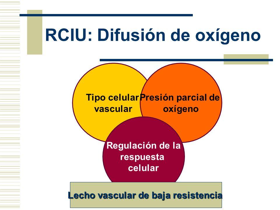 RCIU: Difusión de oxígeno Tipo celular vascular Presión parcial de oxígeno Regulación de la respuesta celular Lecho vascular de baja resistencia