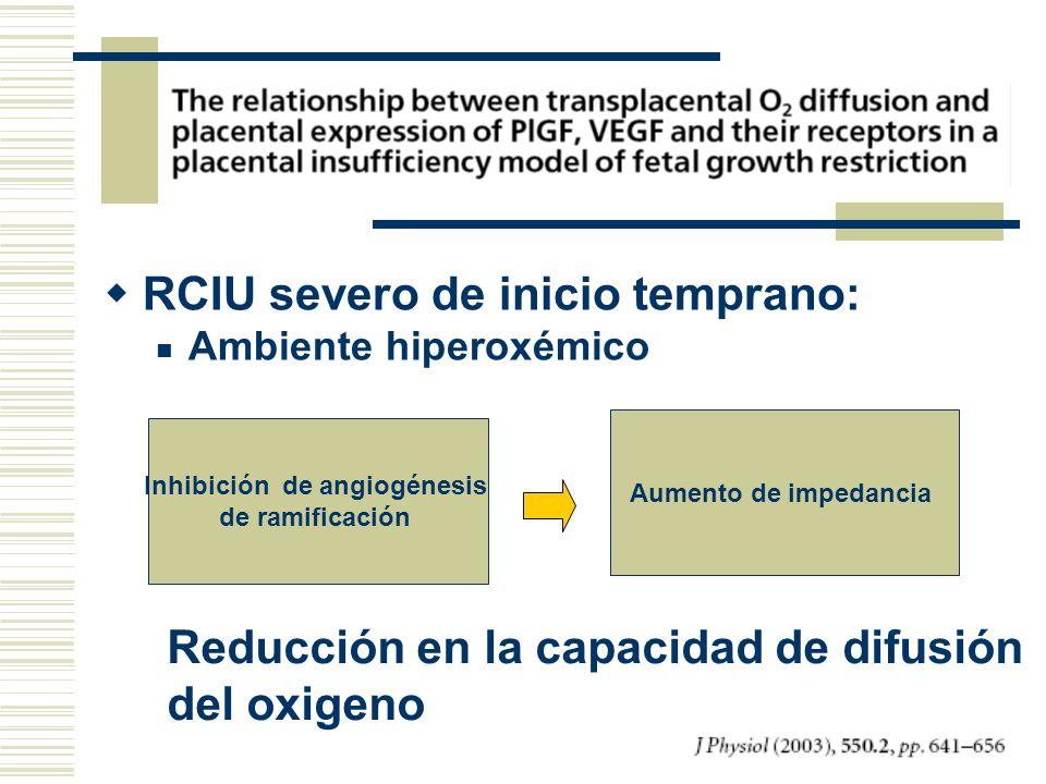 RCIU severo de inicio temprano: Ambiente hiperoxémico Inhibición de angiogénesis de ramificación Aumento de impedancia Reducción en la capacidad de di