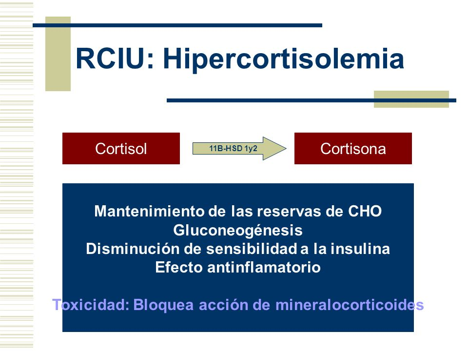 RCIU: Hipercortisolemia CortisolCortisona 11B-HSD 1y2 Mantenimiento de las reservas de CHO Gluconeogénesis Disminución de sensibilidad a la insulina E