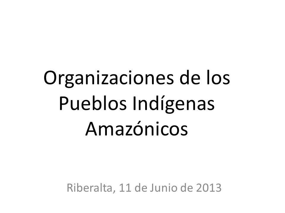 Organizaciones de los Pueblos Indígenas Amazónicos Riberalta, 11 de Junio de 2013