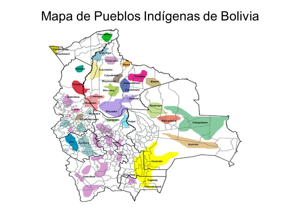 CIDOB Confederación de Pueblos Indígenas de Bolivia FUNDACIÓN CIDOB es representante nacional del movimiento indígena de Bolivia, se fundó formalmente en octubre de 1982, en Santa Cruz de la Sierra, con la participación de representantes de cuatro pueblos indígenas del Oriente Boliviano: Guaraní-izoceños, Chiquitanos, Ayoreos y Guarayos.