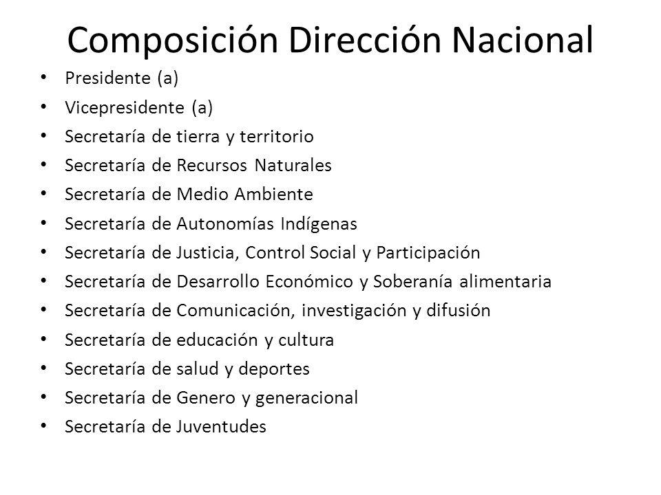 Composición Dirección Nacional Presidente (a) Vicepresidente (a) Secretaría de tierra y territorio Secretaría de Recursos Naturales Secretaría de Medi