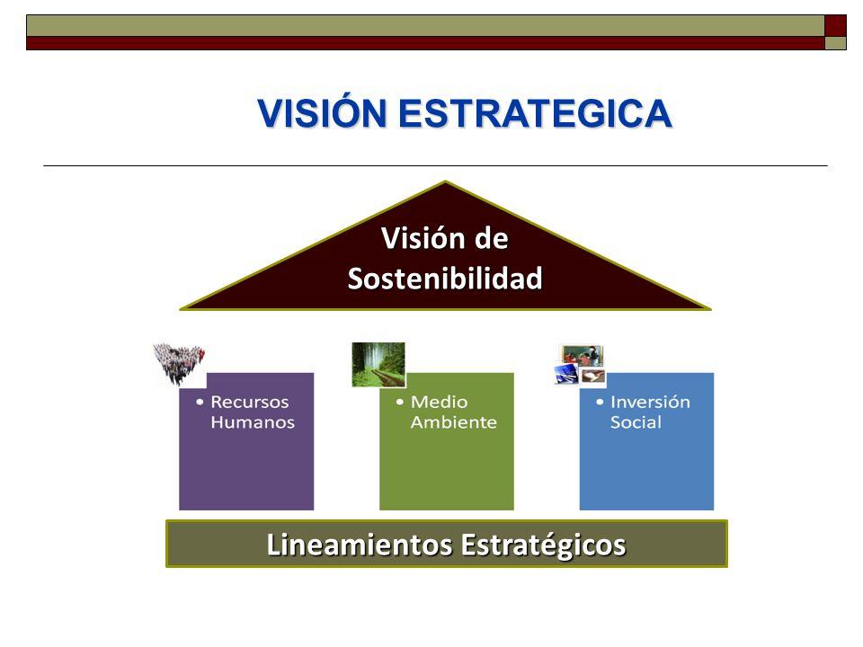 VISIÓN ESTRATEGICA Lineamientos Estratégicos Visión de Sostenibilidad