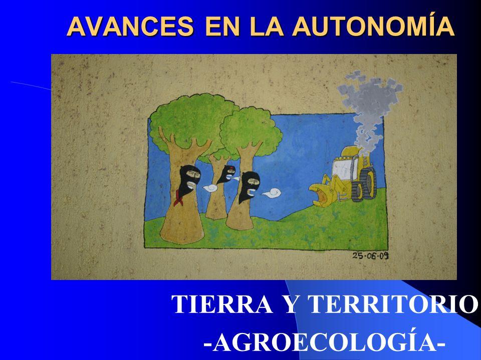 Tierra y Territorio – Agroecología - OVENTIK - Todo lo que tomamos de la tierra lo tenemos que devolver.