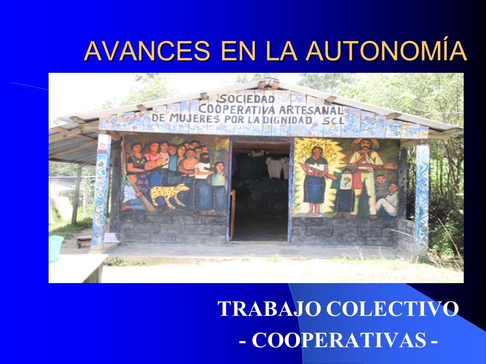Trabajo colectivo – Cooperativas OVENTIK Cooperativas de café (Cooperativa Yachil, Ocosingo).