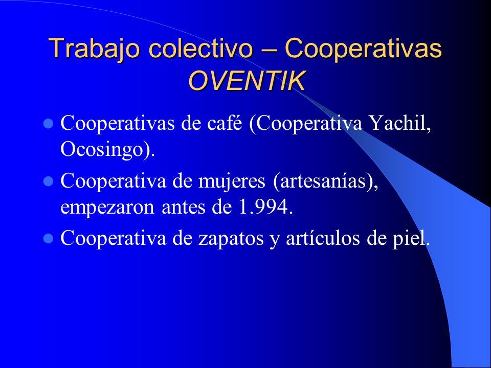 Trabajo colectivo – Cooperativas MORELIA Hay cooperativas a nivel regional, municipal y de zona (funcionan de forma asamblearia en los diferentes niveles).