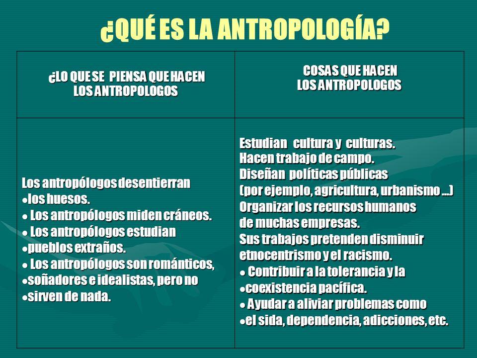 ¿LO QUE SE PIENSA QUE HACEN ¿LO QUE SE PIENSA QUE HACEN LOS ANTROPOLOGOS COSAS QUE HACEN COSAS QUE HACEN LOS ANTROPOLOGOS Los antropólogos desentierra