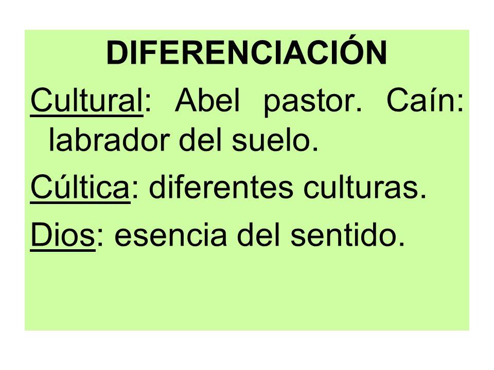 DIFERENCIACIÓN Cultural: Abel pastor. Caín: labrador del suelo. Cúltica: diferentes culturas. Dios: esencia del sentido.
