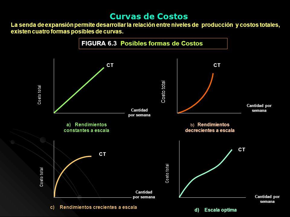 Curvas de Costos La senda de expansión permite desarrollar la relación entre niveles de producción y costos totales, existen cuatro formas posibles de