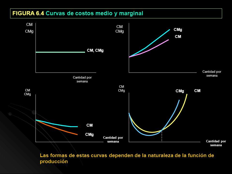 FIGURA 6.4 Curvas de costos medio y marginal CM CMg CM CMg CM CMg CM CMg CM, CMg CM CMg CM CMg CM Cantidad por semana Las formas de estas curvas depen